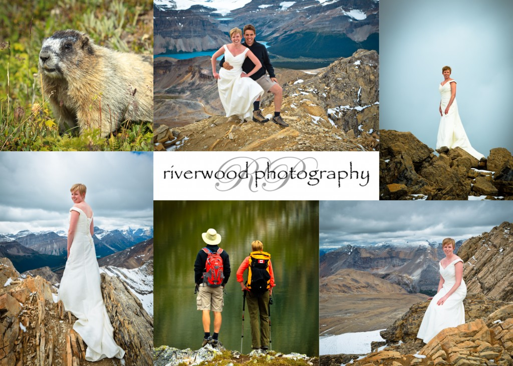 Trash the Dress at 10,000 Feet - Collage