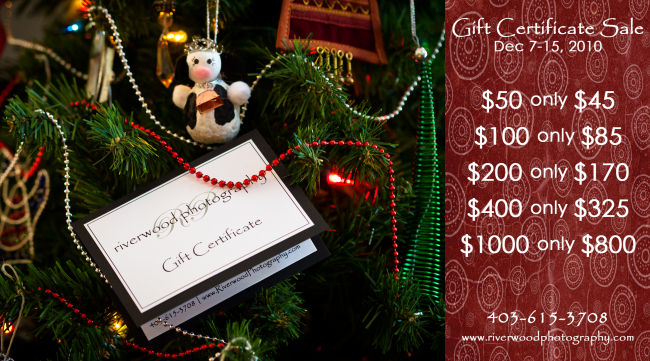 Riverwood Photography December Gift Certificate Sale