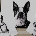 Dog Day Print Orders