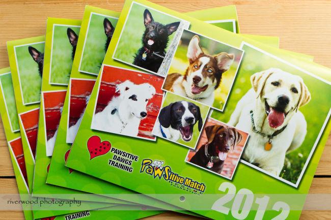 PDawgs Charity Calendar