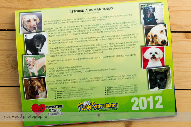 Pawsitive Dawgs Training Charity Calendar (2)