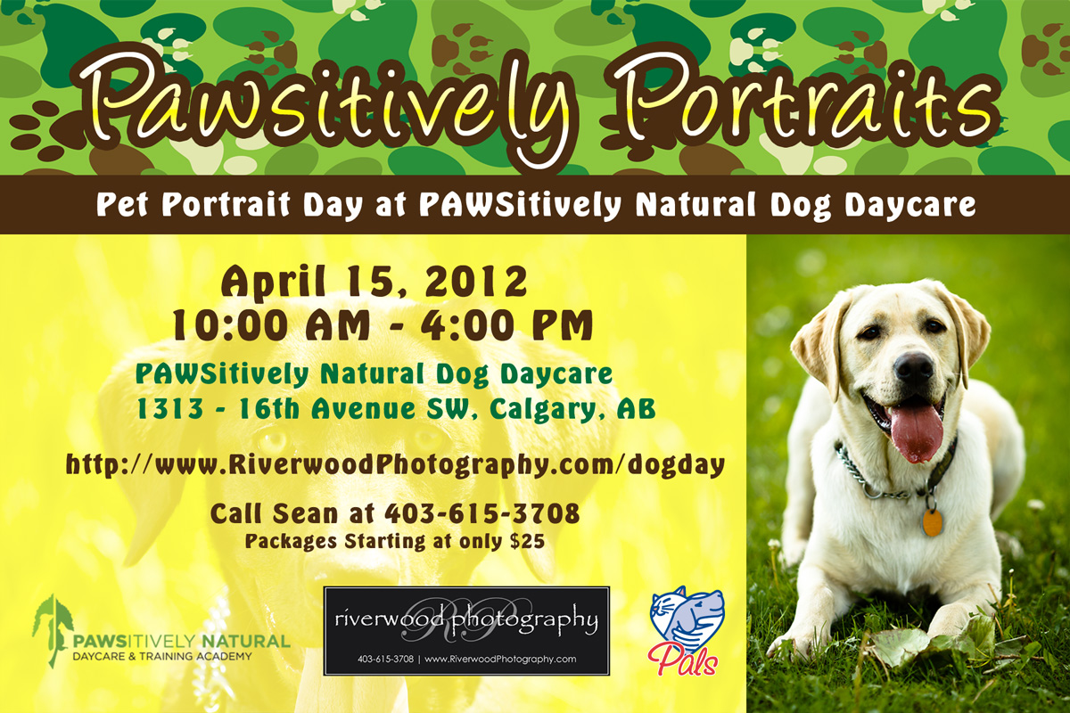 Pawsitively Portraits - Dog Day at Pawsitively Natural