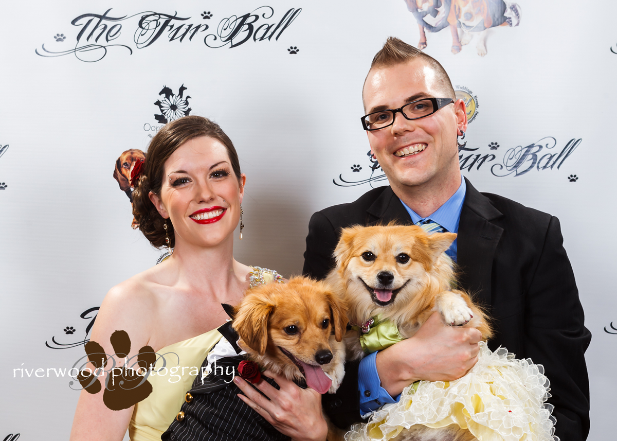 Fur Ball Red Carpet Pawperazzi Portraits