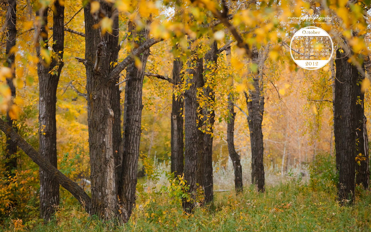 Free Desktop Wallpaper for October 2012