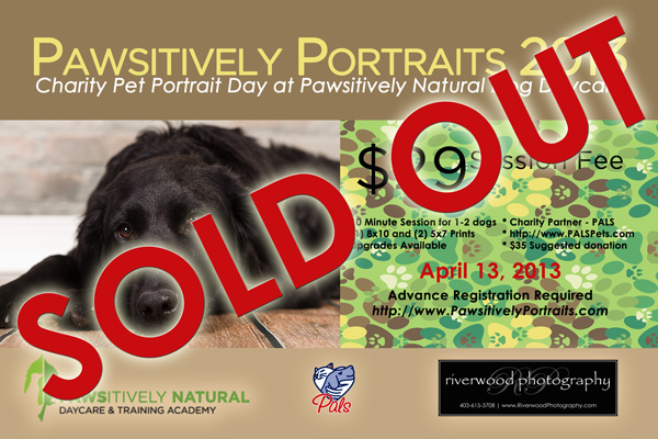 Dog Portrait Day 2013 is Fully Booked
