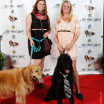 Red Carpet Pawperazzi Portrait at The Fur Ball 2013 (7)
