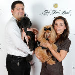 Red Carpet Pawperazzi Portrait at The Fur Ball 2013 (44)