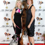 Red Carpet Pawperazzi Portrait at The Fur Ball 2013 (24)