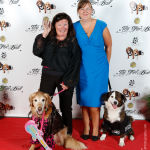 Red Carpet Pawperazzi Portrait at The Fur Ball 2013 (23)