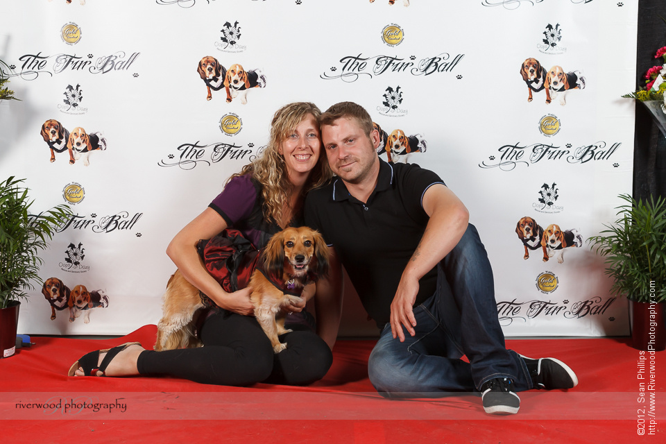 Red Carpet Pawperazzi Portrait at The Fur Ball 2013 (13)
