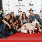 Red Carpet Pawperazzi Portrait at The Fur Ball 2013 (9)