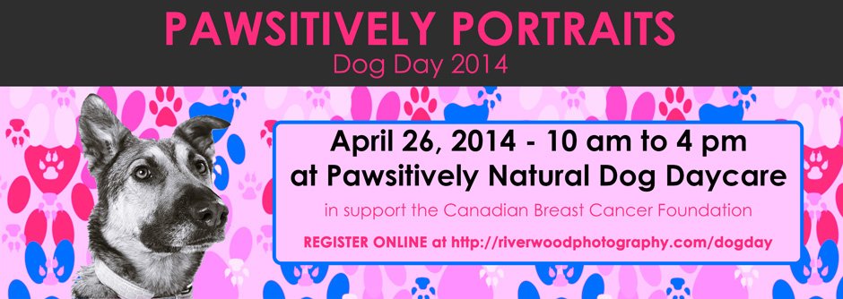 Pawsitively Portraits - Dog Day 2014