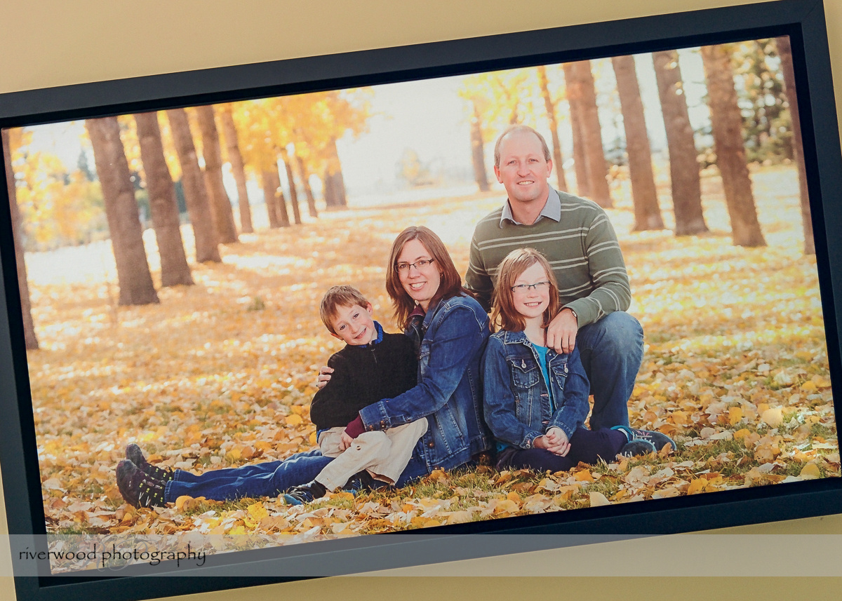 specialty product sample framed canvas print