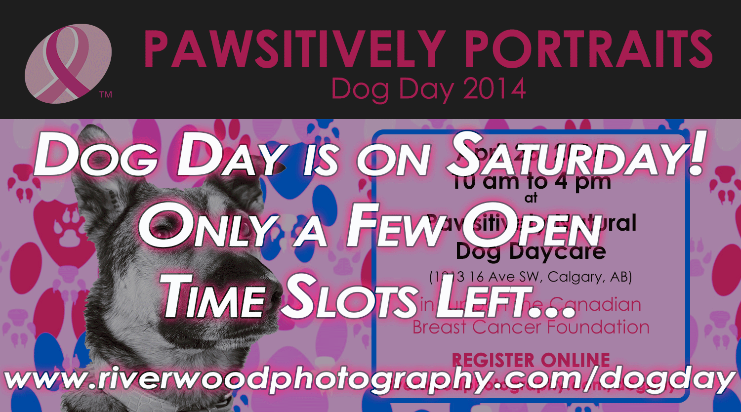 Only a few Open Times Left for Dog Day 2014