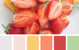 Sample Color Palette from Design Seeds - Fresh Cut Color