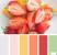 Sample Color Palette from Design Seeds - Fresh Cut Color