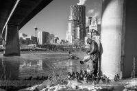 Feeding the Birds under the 4th Avenue Flyover