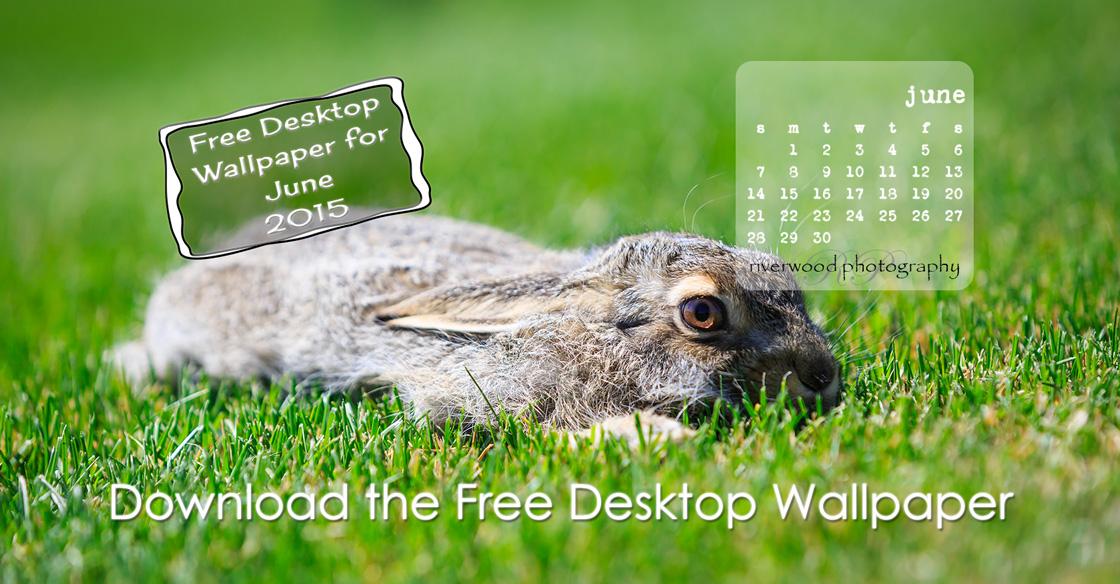 Free Desktop Wallpaper Calendar for June 2015