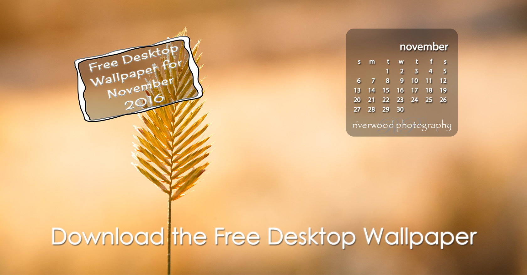 Free Desktop Wallpaper for November 2016