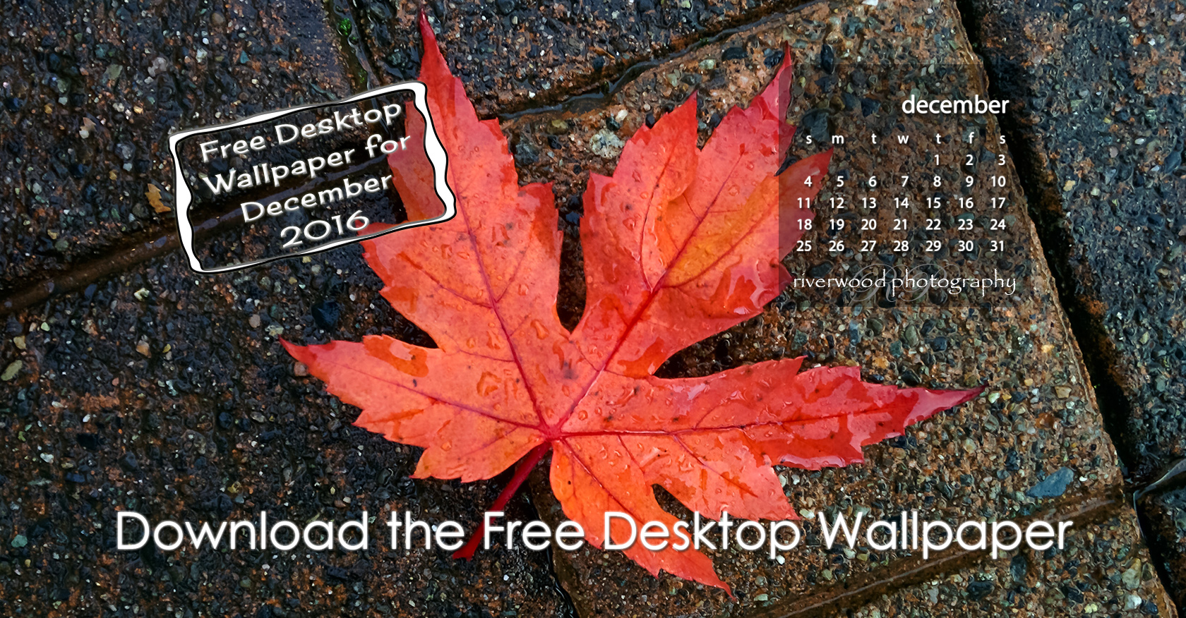 Free Desktop Wallpaper for December 2016
