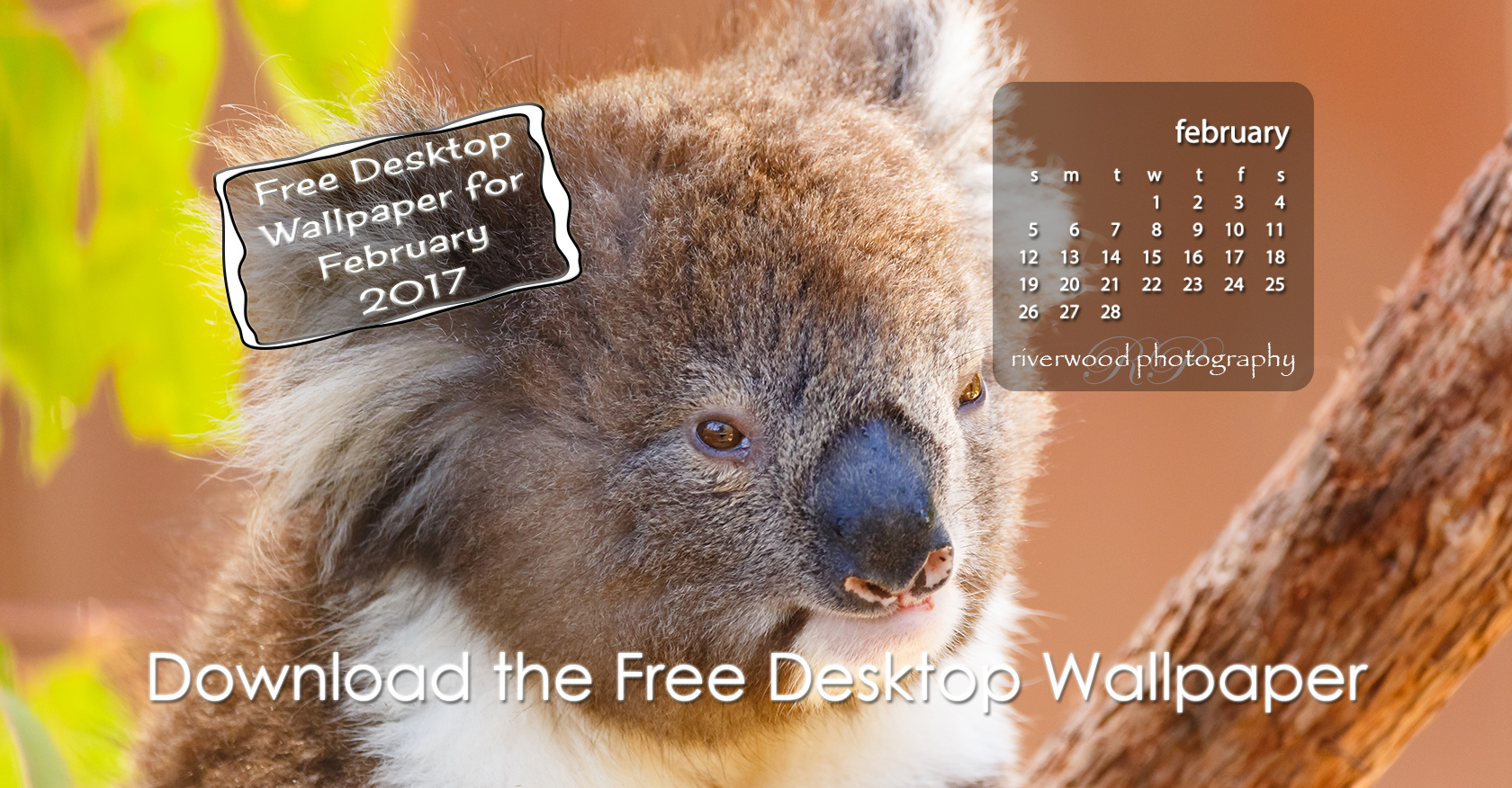 Free Desktop Wallpaper for February 2017
