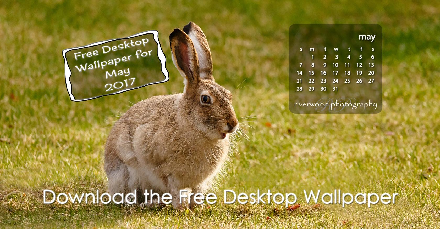 Free Desktop Wallpaper for May 2017
