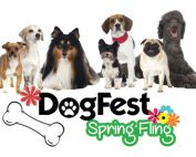 DogFest Spring Fling 2017