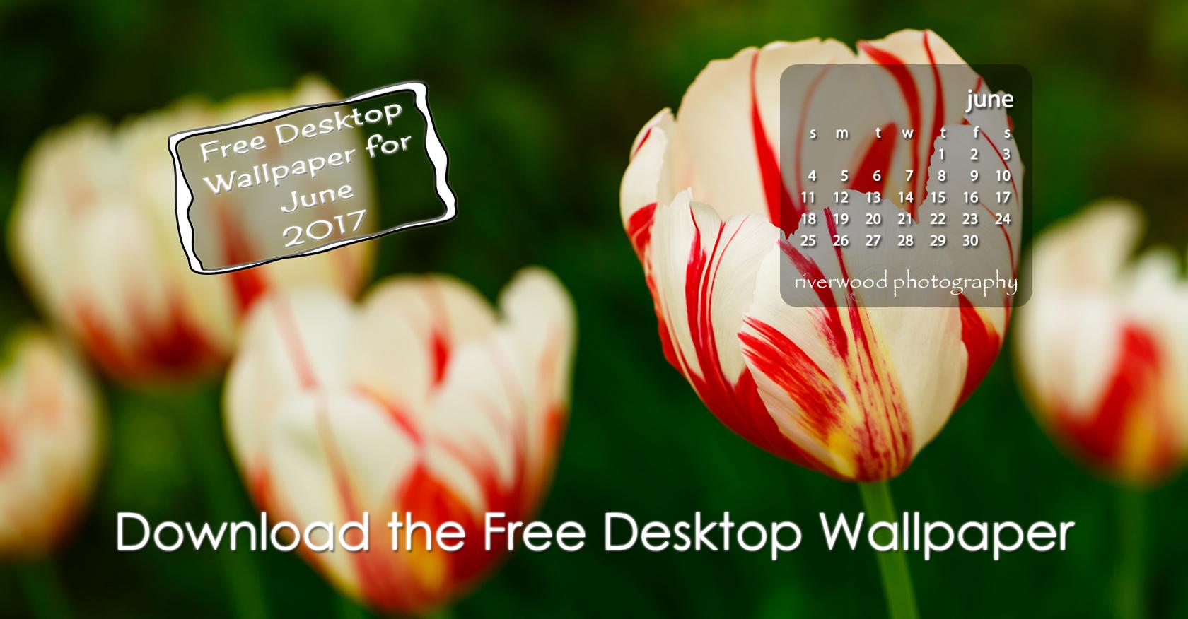 Free Desktop Wallpaper for June 2017