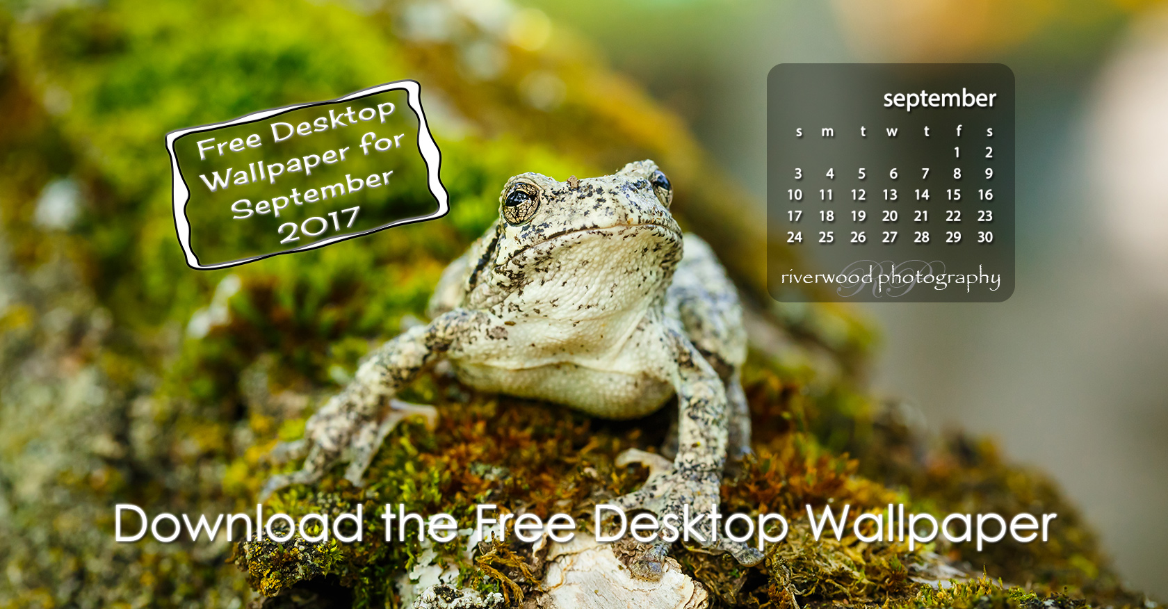 Free Desktop Wallpaper for September 2017