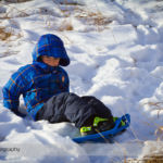 Snowshoeing at Carburn Park