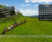 Horseback Riding with Anchor D Ranch