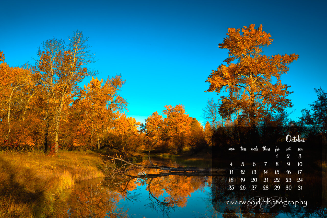 Free Desktop Wallpaper for October 2010