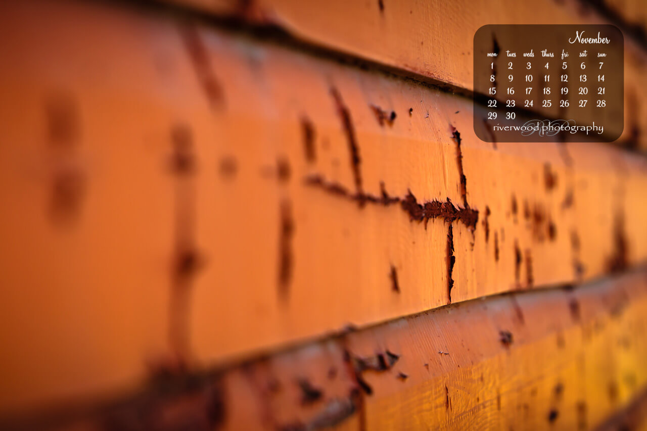 Free Desktop Wallpaper for November 2010