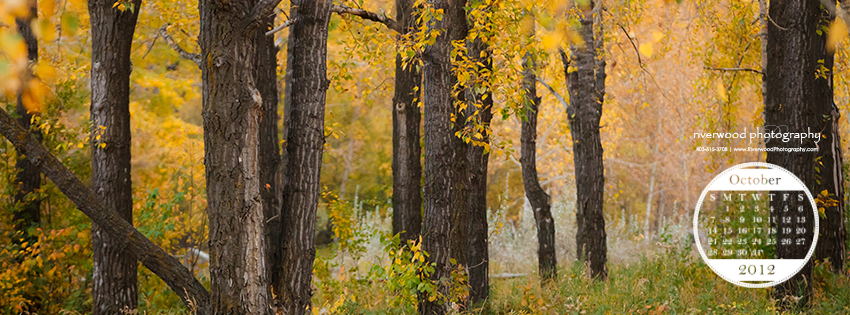 Free Facebook Timeline Cover Image from Riverwood Photography