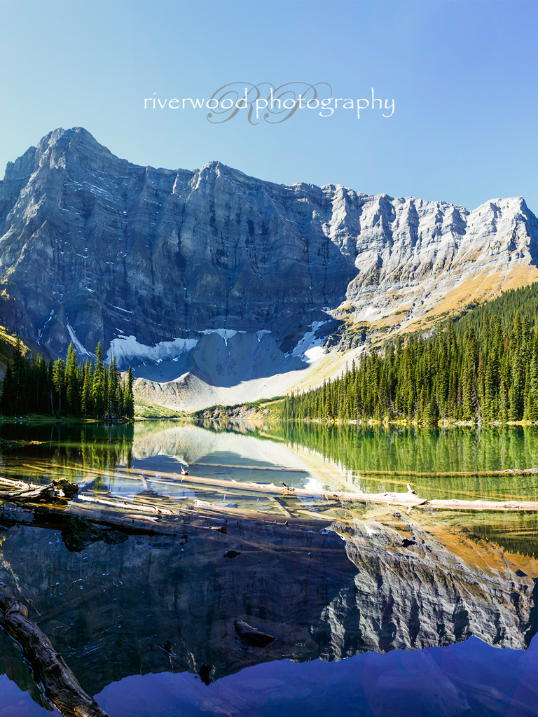 Free Desktop Wallpaper from Riverwood Photography